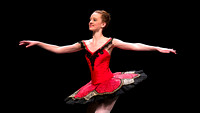 2014 Perimeter Ballet - From Comedy to Classics