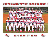 2014 NG Baseball Teams